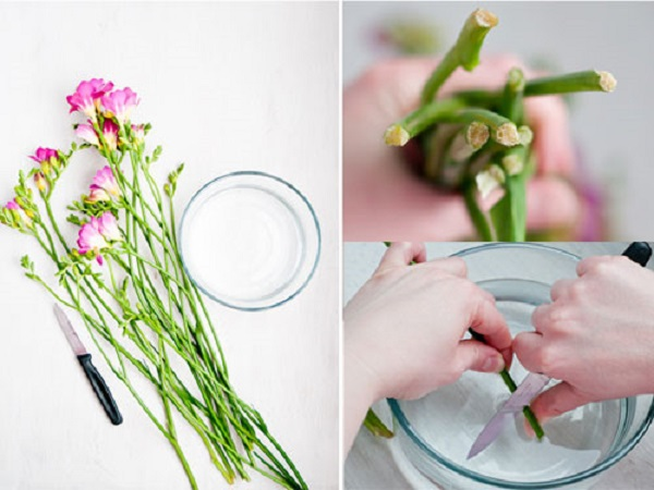 1.Cắm hoa ngày Tết giữ sao cho tươi lâu6