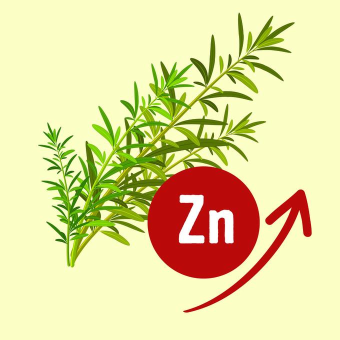 2.11 nguyên liệu tự nhiên giúp loại bỏ mùi hôi cơ thể10