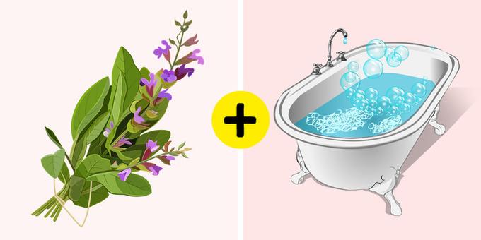 2.11 nguyên liệu tự nhiên giúp loại bỏ mùi hôi cơ thể6