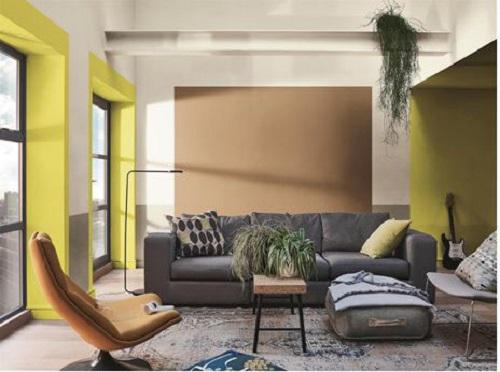 7.Phù phép diện mạo ngôi nhà với sắc màu chủ đạo của Dulux năm 201912