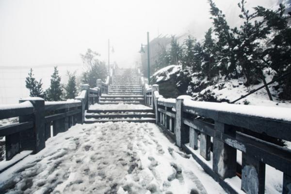 Những hiện tượng thiên nhiên kỳ thú trên đỉnh Fansipan mê hoặc du khách