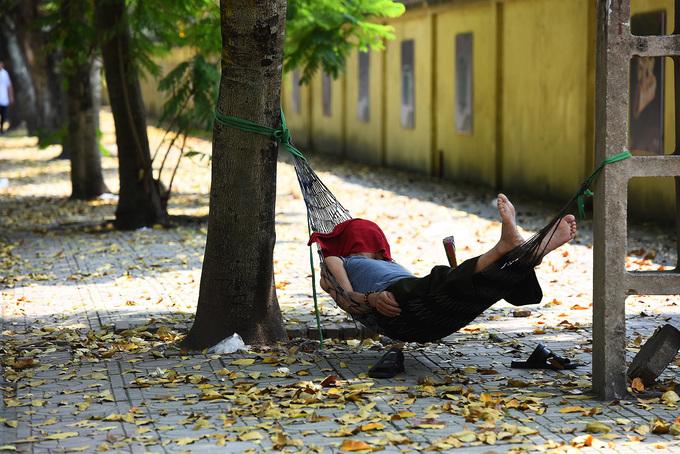 Giấc ngủ trưa vội vàng, tạm bợ trên vỉa hè của ai đó nhưng bỗng trở thành mơ ước của nhiều người. Mắc võng dưới tán cây râm rát, nghe tiếng gió thổi lá cây rơi xào xạc và chìm vào giấc ngủ trưa hè quả thật yên ả không gì sánh được.