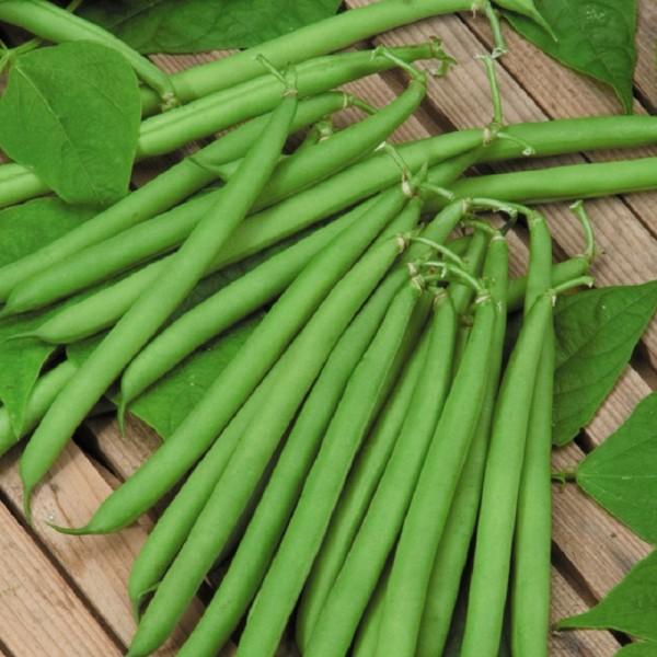 25. 5 loại rau củ nếu nấu không kỹ sẽ chứa độc tính hơn cả thạch tín