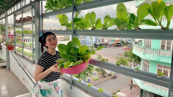 26.Vườn rau sạch mướt mắt trên sân thượng của vợ chồng Thanh Duy - Kha Ly1