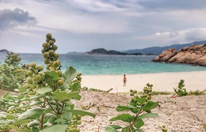 """Là bãi tắm tự nhiên, chưa qua bàn tay khai thác nhiều của con người nên khung cảnh vẫn giữ được nét hoang sơ giống như một hoang đảo. """"Màu của biển thay đổi theo từng khung giờ khác nhau trong ngày, sáng sớm tinh mơ sẽ là màu xanh da trời nhạt, mang cho bạn một cảm giác bình yên đầu ngày. Mình thường dậy rất sớm để chỉ ngồi ngắm biển đổi từ màu xanh trời qua xanh ngọc khi mặt trời lên cao. Buổi chiều biển có màu cam nhạt đôi khi pha sắc hồng tím nữa, hoàng hôn xuống rất nhanh trên biển"""", chị Mây Phạm mô tả."""