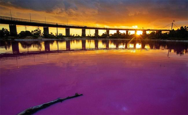 Hồ nước hồng buổi hoàng hôn.