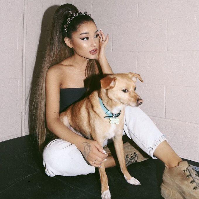 """Tình yêu với động vật là động lực chính để Ariana Grande từ bỏ thịt và phô mai. """"Sẽ hơi khó nếu bạn thường xuyên đi ăn ngoài nhưng tôi sẽ chỉ ăn salad, trái cây, khi về nhà tôi sẽ ăn thêm thứ gì đó""""."""