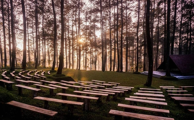 12.Vườn lan đẹp như cổ tích ở Indonesia6