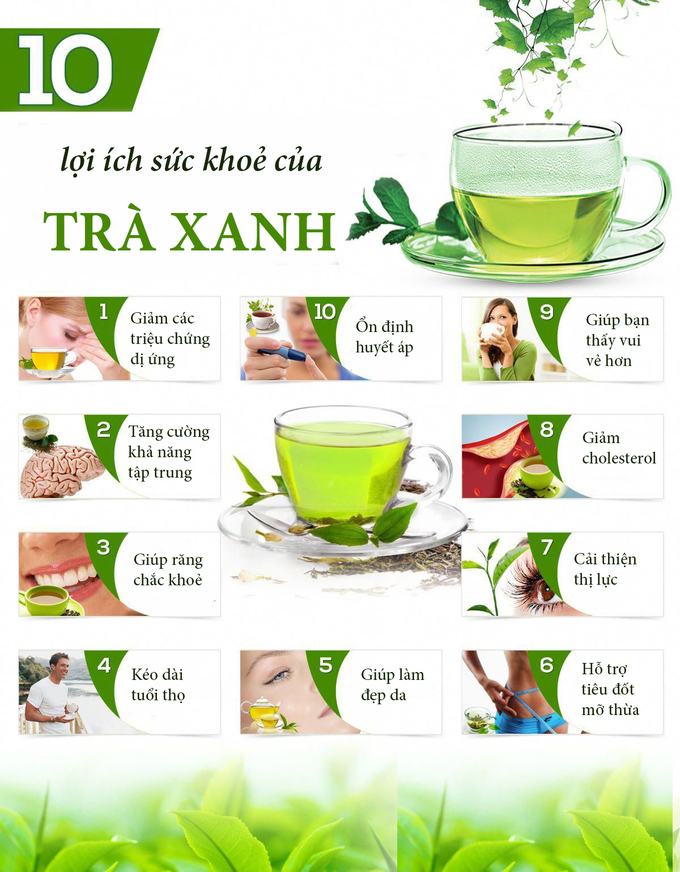5.10 lý do bạn nên uống trà xanh mỗi ngày