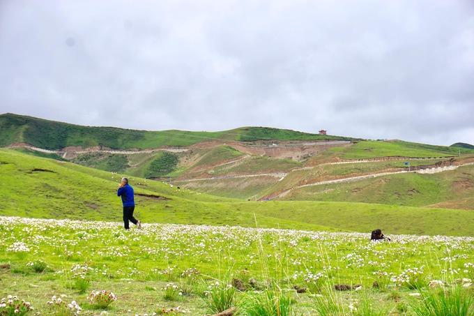 1.Xứ 'hoa vàng cỏ xanh' đẹp như tranh vẽ ở Trung Quốc8