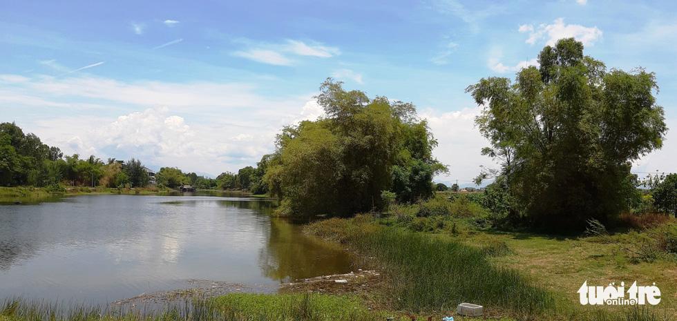 Những lũy tre mọc dọc bờ sông làm cảnh thêm thơ mộng - Ảnh: LÊ TRUNG