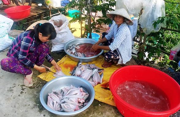 Làm cá tươi để phơi khô