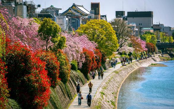 Thành phố Kyoto của Nhật Bản - Ảnh: Travel and Leisure
