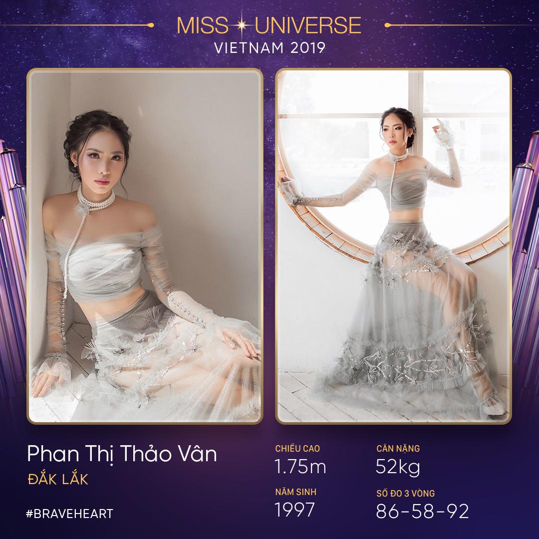 Phan Thi Thao Van