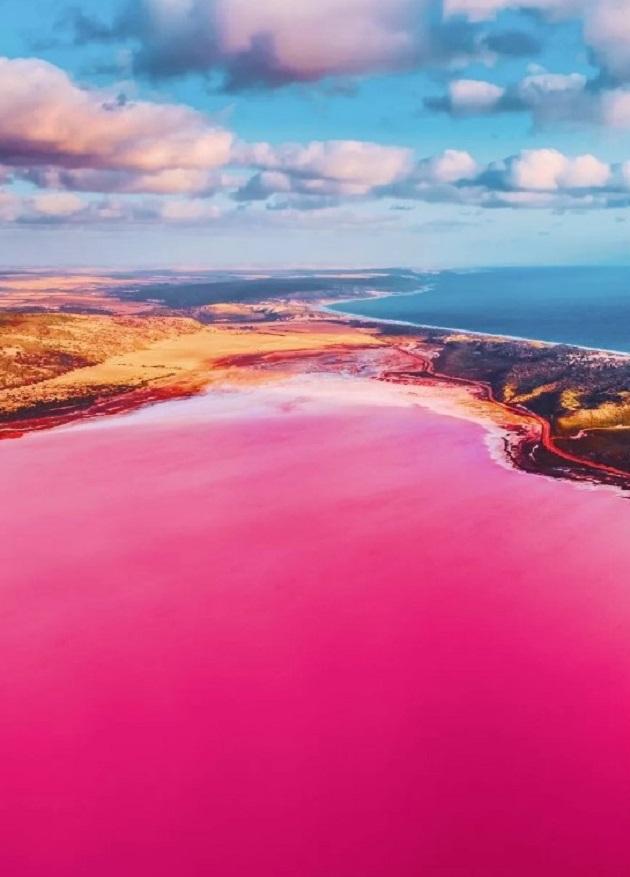 Hutt Lagoon được xem là một hồ muối, nơi cư ngụ của loài tảo đỏ carotene dunaliella salina. Đây là một chất tạo màu thực phẩm và là nguồn cung cấp vitamin A dồi dào.