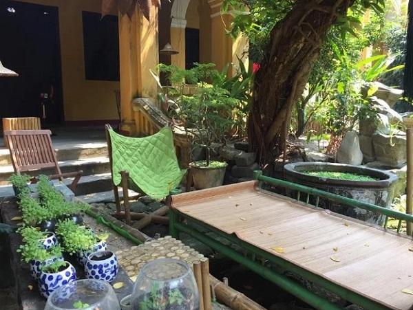 Điểm nhấn của tiệm trà là khu vườn phía sau. Mùa hè oi bức nhưng cây xanh mát làm dịu bớt cái nóng. Có hôm ổi chín thơm lừng, khiến bạn cảm giác như đang ngồi chõng tre, uống nước trong quán ở ngoại ô thành phố - Ảnh: Cocobana