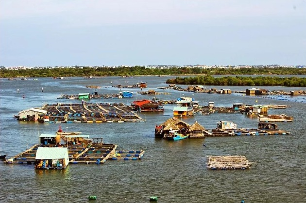 Long Sơn cách trung tâm TP Vũng Tàu khoảng 12km về phía tây nam, được người địa phương gọi là đảo hàu với hàng trăm bè nuôi hàu, cung cấp nguyên liệu cho nhà hàng khắp thành phố lẫn các tỉnh lân cận.