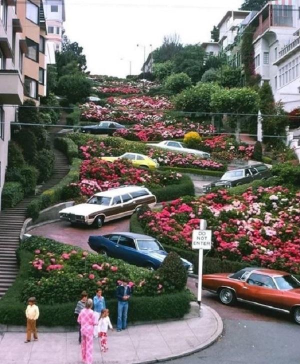 Phố Lombard ở San Francisco (bang California, Mỹ) nổi tiếng vì có đường dốc, ngoằn ngoèo, trồng hoa đẹp. Nhiều năm nay, nó trở thành một trong những điểm đến hút du khách nhất ở thành phố.
