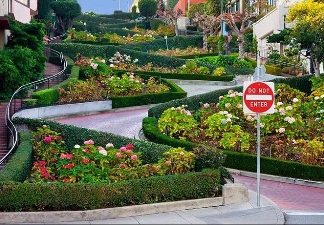 Trên vệ đường, người ta thiết kế bồn hoa xen kẽ, thay đổi theo mùa như một công viên thu nhỏ. Đường một chiều, xe chạy từ trên dốc xuống để đảm bảo an toàn.
