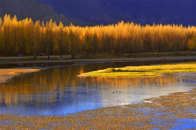Hồ Vàng là một trong những địa điểm yêu thích của những hoạ sĩ hay nhiếp ảnh gia muốn ghi lại khoảnh khắc giao mùa mỗi năm chỉ bắt gặp một lần. Khung cảnh rặng cây cam rực rỡ dưới ráng chiều, in bóng xuống mặt hồ phẳng lặng, phía xa là dãy núi hùng vĩ, trùng điệp, tạo nên bức tranh thu quyến rũ, thơ mộng.