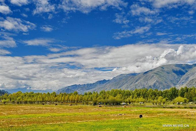 Nằm tại thôn Bagaxue, thị trấn Tajie, huyện Dagze, thành phố Lhasa, hồ Kim Sắc trở thành điểm đầu tư thu hút du lịch, cải thiện đời sống của người dân Tây Tạng. Một sự án trị giá 360 triệu nhân dân tệ đã bắt đầu triển khai từ tháng 8 để biến thắng cảnh hoang sơ này trở này một khu du lịch sinh thái phức hợp.