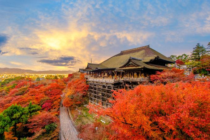 Nhật Bản vào thu rực rỡ sắc màu đỏ vàng khắp mọi nơi.