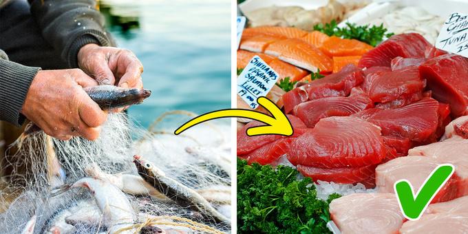 Cá nuôi trong trang trại  Cá hoang dã chứa nhiều Omega 3, rất tốt cho tim mạch. Hiện nay, nhiều loại được nuôi trồng trong trang trại chứa các chất phụ gia hóa học mà nông dân sử dụng để làm cho chúng phát triển nhanh hơn. Các chất này không tốt cho sức khỏe.