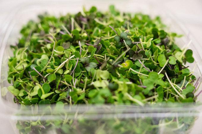 Sau khi được đóng gói, những gói rau xanh sẽ được chở bằng xe tải với quãng đường chưa tới 10 km để đến công ty Food Group - nơi cung cấp đồ ăn cho Singapore Airliens ở sân bay Newark. Hãng hàng không Singapore Airlines cho biết, thời gian đầu, họ sẽ sử dụng rau ở nông trại này với 3 món khai vị, bao gồm: salad rau vườn, gỏi ceviche và gà luộc ăn kèm rau xanh.