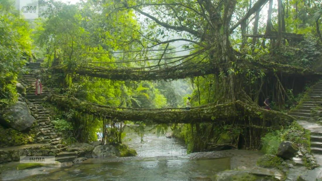 """Mawlynnong được mệnh danh là """"ngôi làng sạch nhất châu Á"""" nhờ các gia đình Khasi - cộng đồng dân tộc theo chế độ mẫu hệ ở Ấn Độ - luôn giữ cho ngôi làng của họ nguyên sơ. Không khí trong lành, nhiều đoạn cây cối um tùm khiến bạn như lạc vào khu rừng nguyên sinh, khá thú vị."""