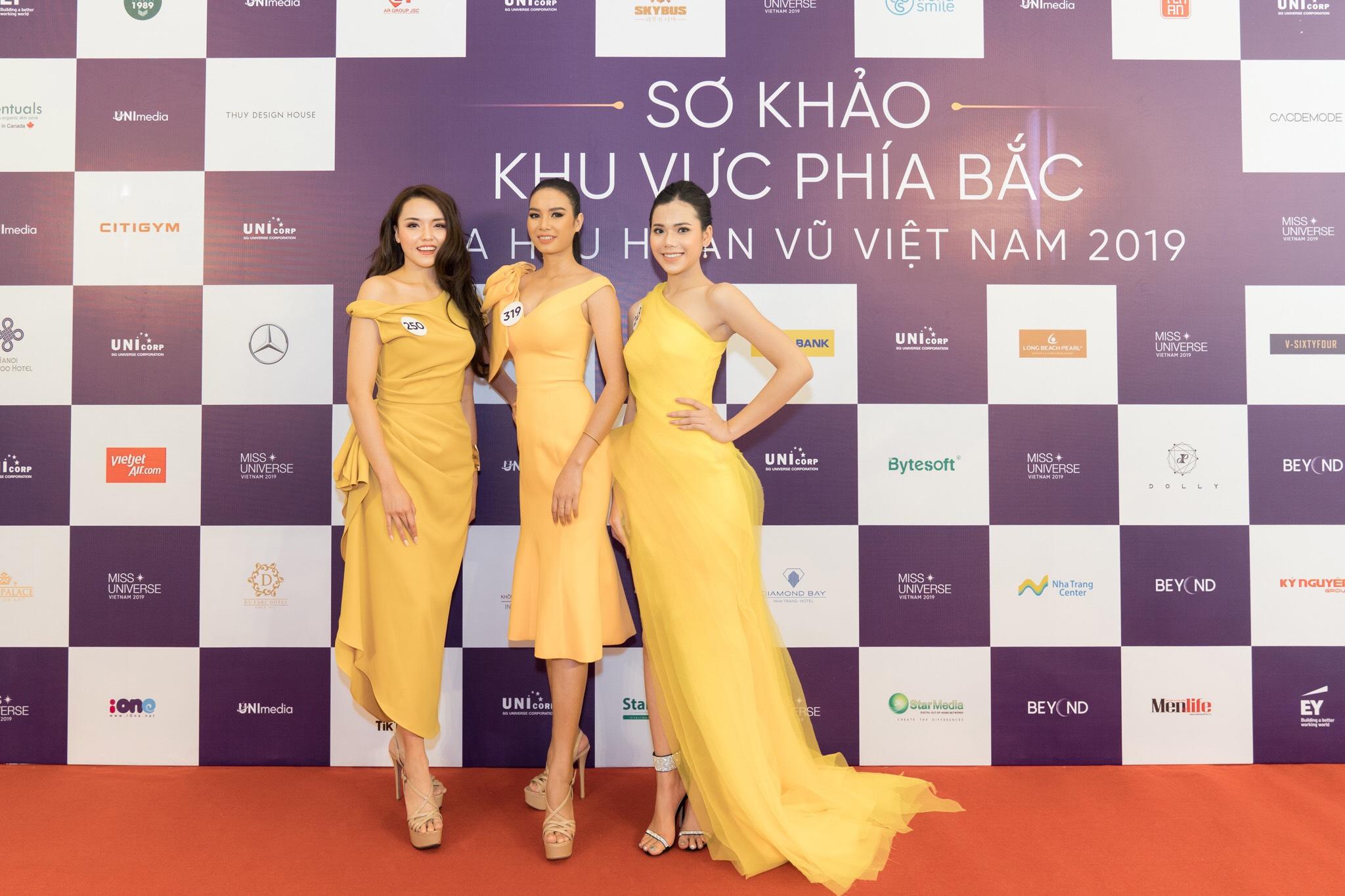 Thi sinh so khao phia Bac Hoa hau Hoan vu Viet Nam 2019 (3)