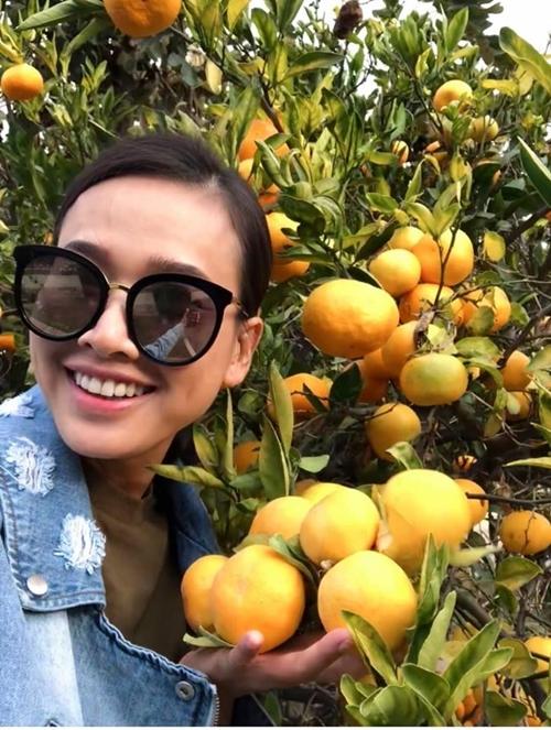 Hoa hậu Phụ nữ Việt Nam 2006 có một khu vườn nhỏ trong căn nhà cô thuê để sống tại Mỹ. Linh cho biết những người Việt ở đây đều yêu thích vườn tược, nhà ai cũng có vài cây ăn trái và mấy luống rau xanh.