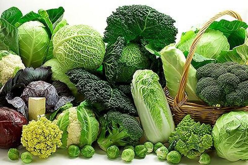 10. 5 loại thực phẩm bảo vệ tử cung4