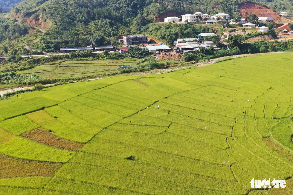 Nơi này gắn với lịch sử lâu đời của người Cơ tu tại Axan. Ruộng bậc thang Chuôr đã được UBND tỉnh Quảng Nam công nhận là Danh thắng cấp tỉnh năm 2010 - Ảnh: TẤN LỰC