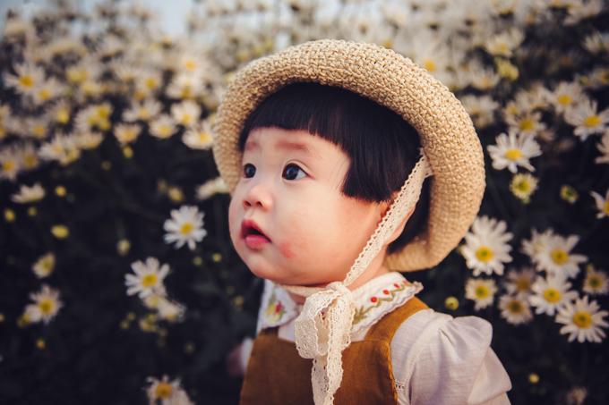 1. Bé gái mếu máo khóc khi chụp ảnh với cúc họa mi4