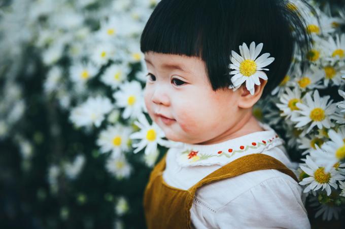 1. Bé gái mếu máo khóc khi chụp ảnh với cúc họa mi8