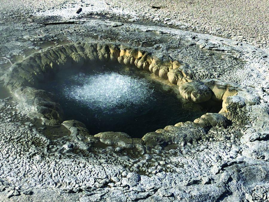 Hơn 77% đời sống hoang dã đã bị mất đi kể từ khi con người xuất hiện trên trái đất này. May mắn thay, công viên quốc gia Yellowstone vẫn còn lưu giữ nguyên vẹn một hệ sinh thái đa dạng và đặc trưng của động thực vật miền ôn đới.