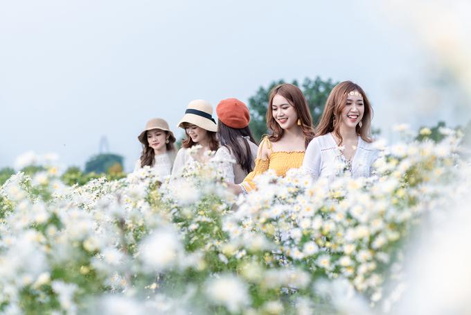 Cánh đồng hoa ở Thạch Cầu - Long Biên rộng tới 3.000 m2, trồng xen kẽ cúc hoạ mi trắng, cúc vàng, thạch thảo tím... cùng nhiều loại hoa khác, khoe sắc đẹp nhất là vào thời điểm tháng 11.