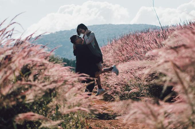 5.Đồi cỏ đuôi chồn hồng rực ở Đà Lạt4