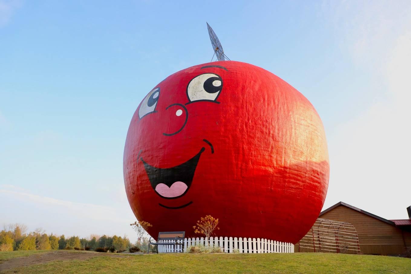Tiệm bánh hình quả táo lớn nhất thế giới2