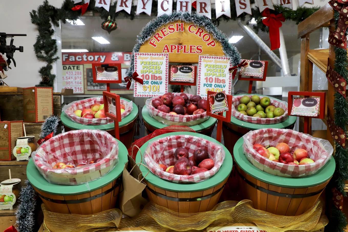 Tiệm bánh hình quả táo lớn nhất thế giới5