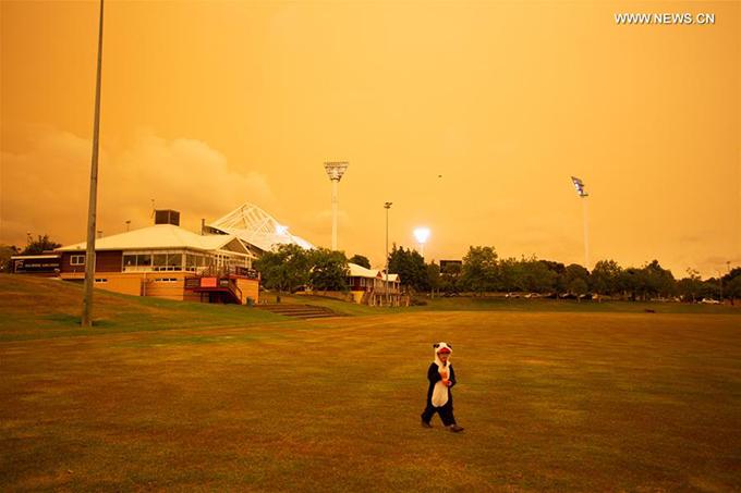 1.Điểm du lịch ở New Zealand bị nhuộm vàng vì cháy rừng2