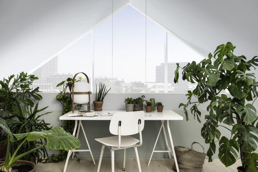 Bảng màu Kết Nối mang đến sự thanh tĩnh và êm dịu nơi không gian, khi dùng cho góc làm việc có thể giúp tăng cường sự tập trung và hiệu quả trong công việc