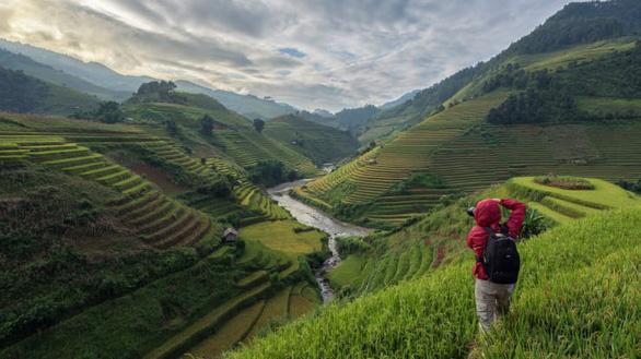 Tour du lịch chụp ảnh rất phổ biến ở Mù Cang Chải - Ảnh: Kiatanan Sugsompian