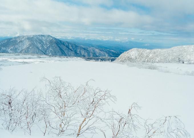 4. Cung đường tuyết 'mái nhà Nhật Bản'3