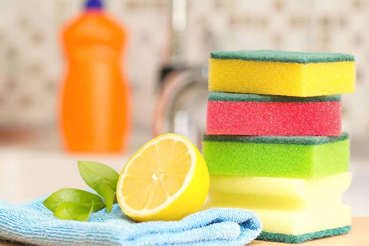 5.4 cách vệ sinh giúp tủ lạnh giúp diệt khuẩn, phòng dịch corona2