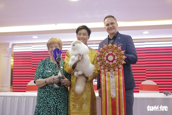 Bé mèo Kindly Cat Admiral đoạt giải Best General - giải thưởng dành cho bé mèo đẹp nhất show - Ảnh: MAI THƯƠNG