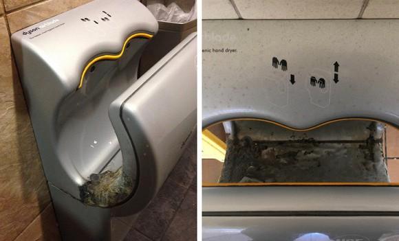 Một lý do nữa là máy sấy khô không bao giờ được vệ sinh sạch sẽ, đặc biệt là nơi công cộng