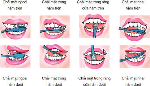 huong-dan-cach-danh-rang-dung-cach-15959943518531691176211-1596004423508-15960044237411894147002